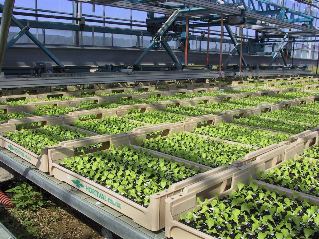 Des r f rences et informations techniques pour optimiser vos productions l gumi res lot et - Chambre d agriculture 47 ...