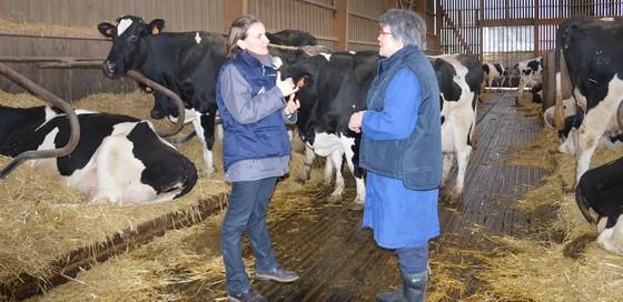 Ca47 bovins lait lot et garonne - Chambre d agriculture 47 ...